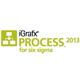 iGrafx 2013 Process for Six Sigma - Small product image