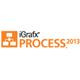 iGrafx 2013 Process - Small product image